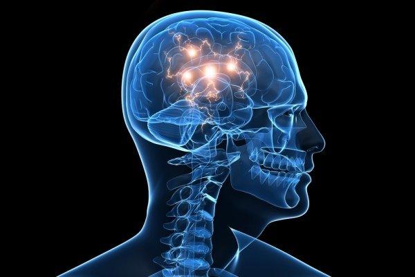 brain BCI